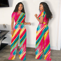 Casual Print Short Sleeve And Pants 2 Piece Sets SHE-7268