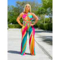 Plus Size Sexy Fashion Print Tie Up Top And Pants 2 Piece Sets SHE-7254