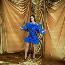 Sexy Sequin Mesh Long Sleeve Club Dress CYA-9070