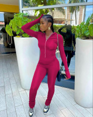 Solid Long Sleeve Zipper Stacked Jumpsuit WSM-5281