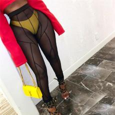 Sexy Mesh See Through High Waist Pants XEF-P00388