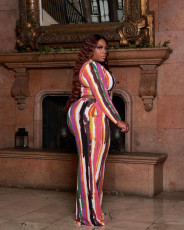 Plus Size Printed Long Sleeve O Neck 2 Piece Pants Set MWDF-8339