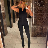Solid Sexy Sleeveless Zipper Tight Jumpsuit BLG-P165664A