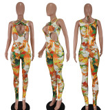 Sexy Printed Sleeveless Hollow Out Jumpsuit QIYF-Q1005