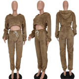 Fluffy Plush Hooded Long Sleeve 2 Piece Pants Set YUYF-6122