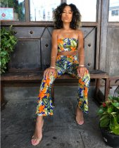 Floral Print Strapleess Crop Top Pant Sets OJS-9004