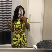 Zebra Print Casual Two Piece Matching Sets YN-9081