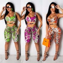 Sexy Snake Print Shorts Two Piece Set CM-559