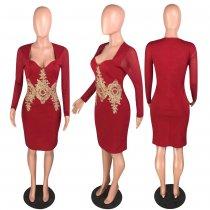 Sexy Long Sleeve Applique Bodycon Dresses WZ-8221