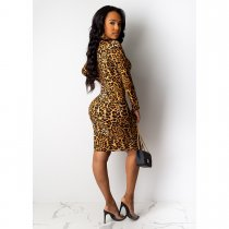 Leopard Print Long Sleeve O Neck Bodycon Dress SHE-7125