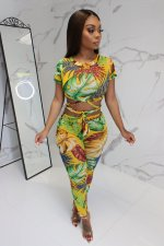 Floral Print Crop Tops And Long Pant Two Piece Set MOF-5087
