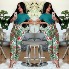 Casual Printed Short Sleeve Long Pants Two Piece Suits CL-6017