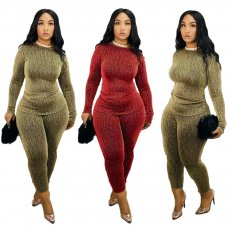 Casual Long Sleeve Two Piece Pants Sets JH-137