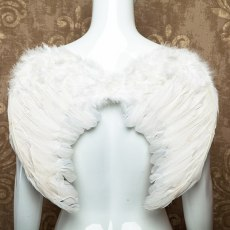 Halloween Fairy Angel Wings
