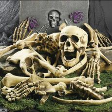 Skeleton Bones 28 Pieces Halloween Props
