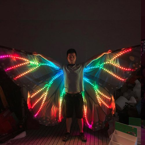 Colorful Belly Dance Performance Costume LED Wings Dance Accessories Girls LED Wings Costume LED Butterfly Wings