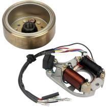 DY100 Magneto Coil + Flywheel Rotor For KAZUMA 50CC-110CC ATV Quad Dirt Bike