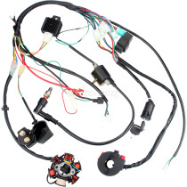 50CC-110CC Wiring Harness CDI 6Coil Pole Ignition Electric For ATV Pit Dirt bike