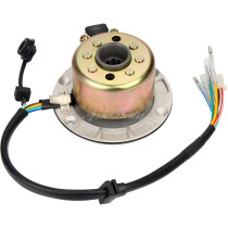 Kits Stator Rotor Magneto Coil Replacement Part Fit for ZongShen 150CC Oil-cooled Engine ATV Pit Bike Parts