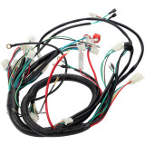 European Standard Engine Wiring Harness Wiring Loom For 150cc - 250cc PIT Trail Dirt Quad Bike ATV Go Kart Dune