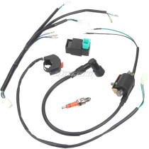 Foot Start Wire Harness Wiring Loom CDI Ignition Coil Replacement Wire Harness Kit Rebuild Kit for 50cc 70cc 90cc 110cc 125cc Stator CDI Coil Pit Dirt Bike