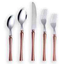 20 Pieces Plastic Handle with Rose Gold Plated,Service for 4
