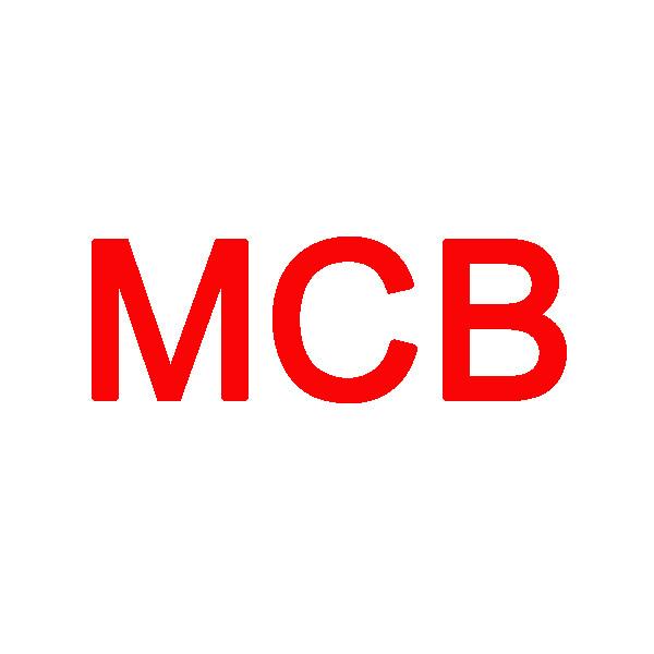 MCB Unisex hooded down jacket