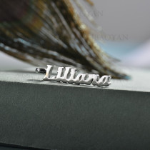 charms de encanto DIY dije en acero inoxidable -SSPTG143-15385-S
