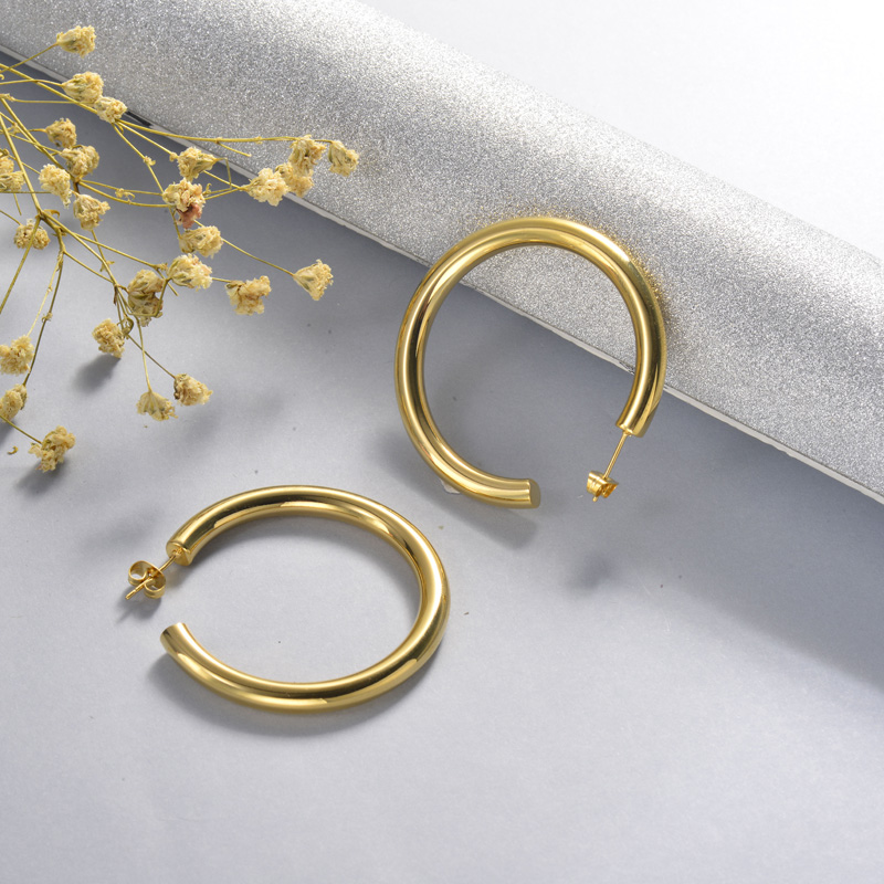 Stainless Steel Hoop Earrings -SSEGG143-15852-G