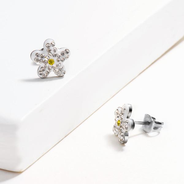 Aretes de Cristal en Acero Inoxidable -SSEGG143-14819-S