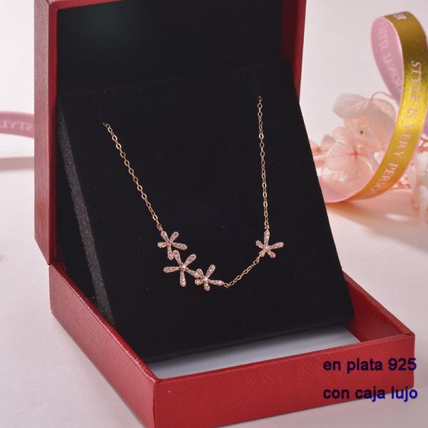 Collar de Plata 925 con Circones para Mujer -PLNEG189-22313