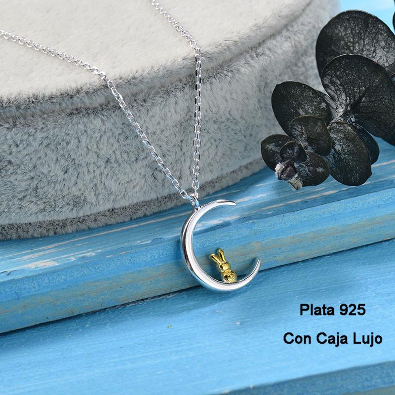 Collares de Plata 925 Puro para Mujer -PLNEG190-24249