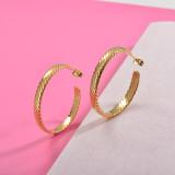 Zarcillos de Acero Inoxidable para Mujer -SSEGG157-29989