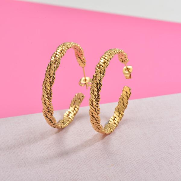 Zarcillos de Acero Inoxidable para Mujer -SSEGG157-29985