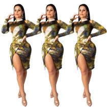 Bodycon Dress 001