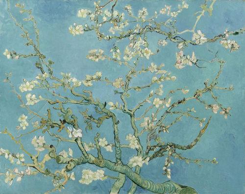 Almond Blossom, 1890. Van Gogh Museum