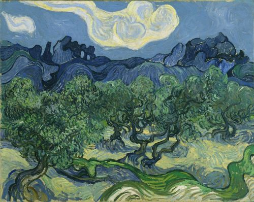 Olive Trees with the Alpilles in the Background, 1889, Museum