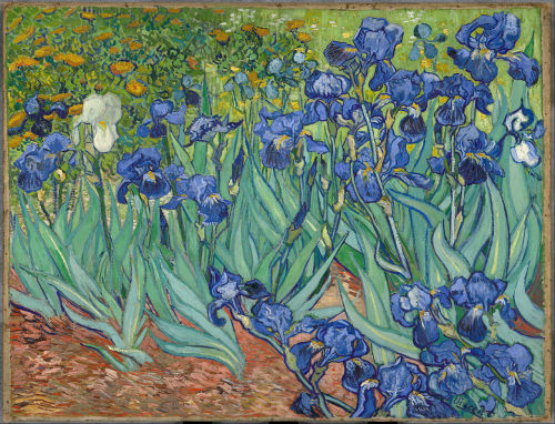 Irises, 1889, Getty Center, Los Angeles