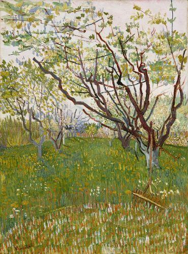 Cherry Tree, 1888, Metropolitan Museum of Art, New York