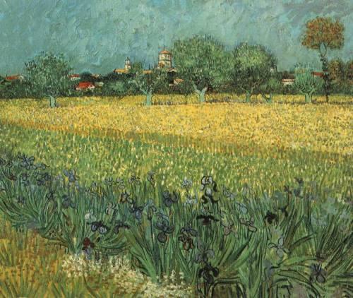 View of Arles with Irises, 1888, Van Gogh Museum, Amsterdam