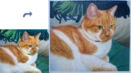 Custom pet portrait, Pet painting, Hand painted oil painting on canvas, portrait painting from photos