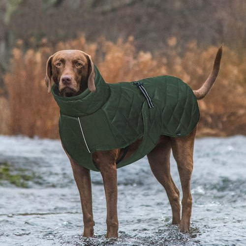 Woven Clothes for Dogs Winter Pet Jacket Dog Coat Reflective Warm Cotton Waterproof Fleece with Harness Medium Large Dogs Green