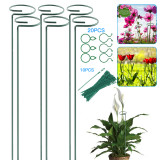 Plant Support Stakes- wtowin.com