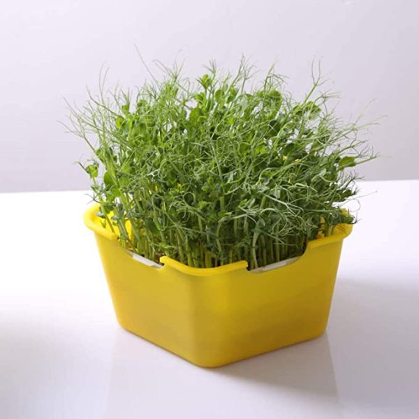 Seed Sprouting Trays, Dirt Free Planting Nursery Tray, Seed Germination Tray Bpa Free Nursery Tray