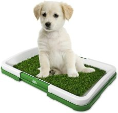 Pet Indoor Puppy Potty Trainer, Dog Training Pad Puppy Cat Waste Poop Grass Mat, Puppy Dog Toilet