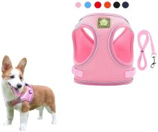 Dog Harness and Leash Set, Breathable Soft Mesh Puppy Vest Harness, Adjustable Pet Harnesses Cat