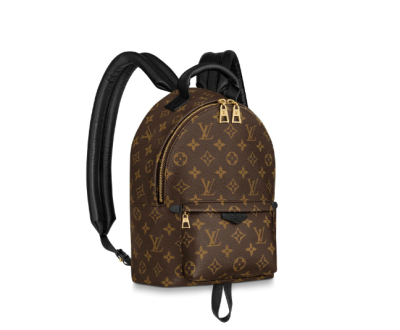 Louis Vuitton Monogram Canvas Palm Springs PM Shoulders Bag M44871