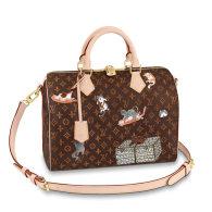 Louis Vuitton Damier Canvas Speedy 30 Catogram Handbag Bag Brown M44401