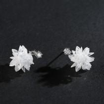 silver earring MLE541