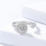 Silver Rotary ring 506